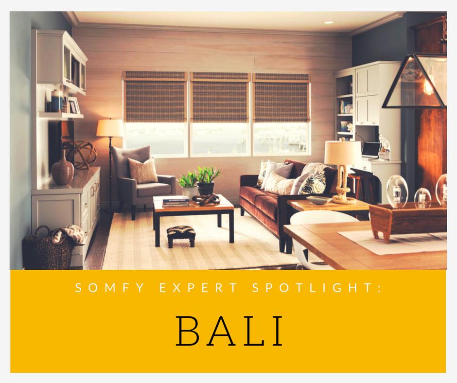 Expert spotlight bali for Bali motorized blinds programming